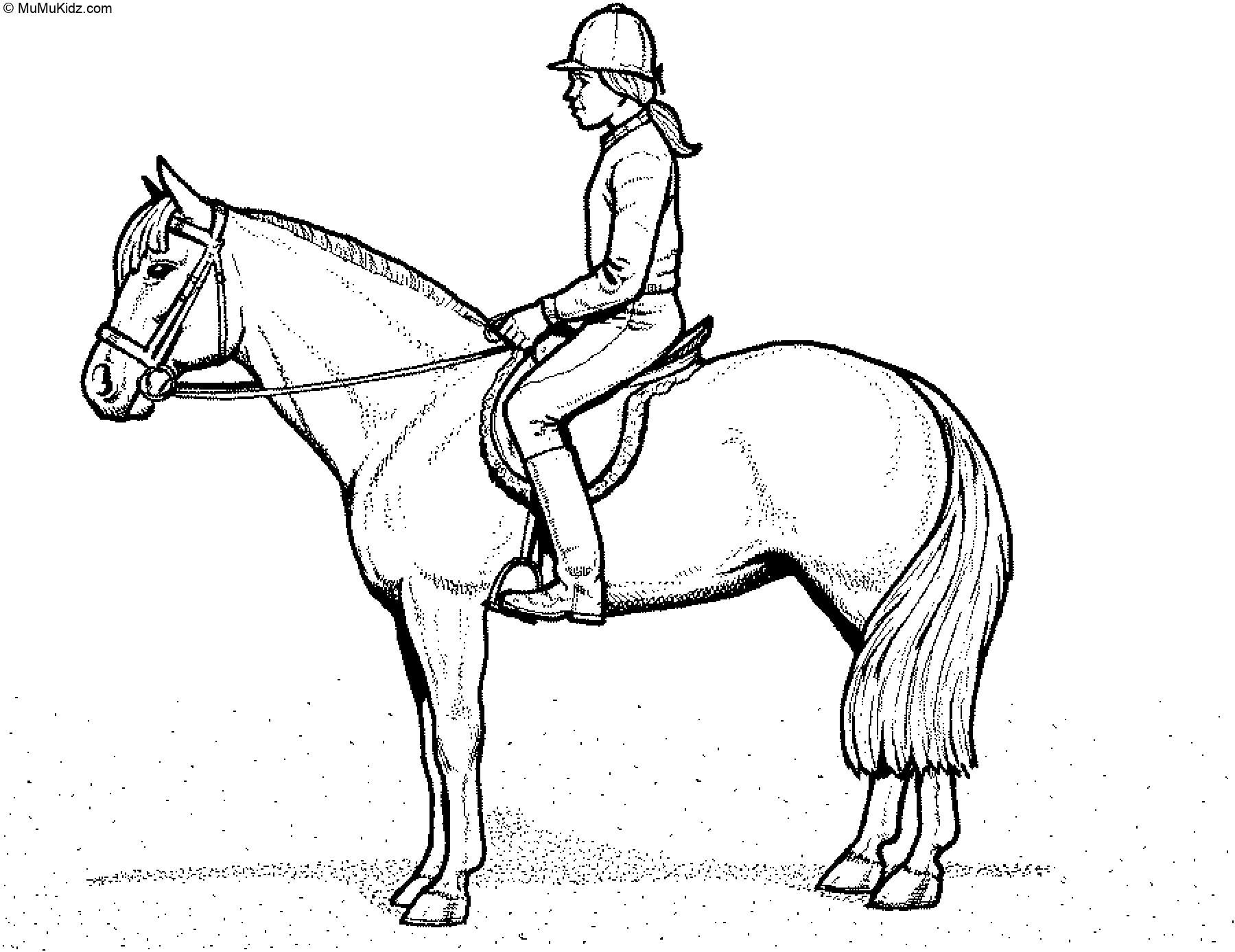Am Schnellsten Pferdebilder Zum Ausmalen